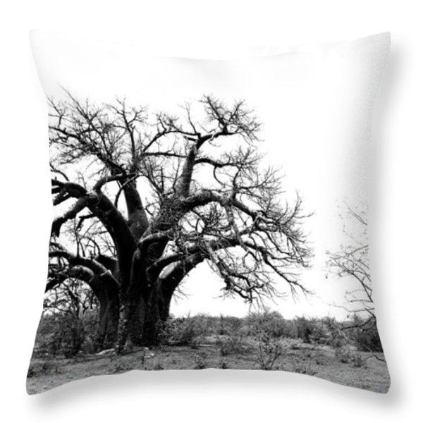 Baobab Landscape Throw Pillow by Bruce J Robinson