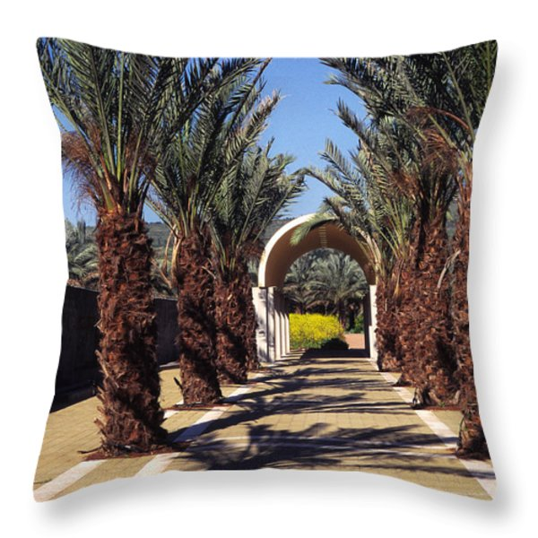 Baptism site of Christ on the Jordan River Throw Pillow by Thomas R Fletcher