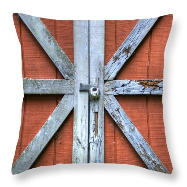 Barn Door 2 Throw Pillow by Dustin K Ryan