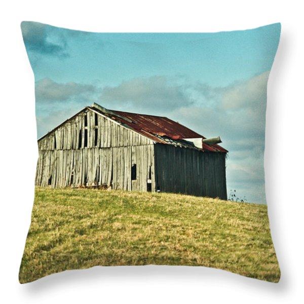 Barn In Ill Repir Throw Pillow by Douglas Barnett