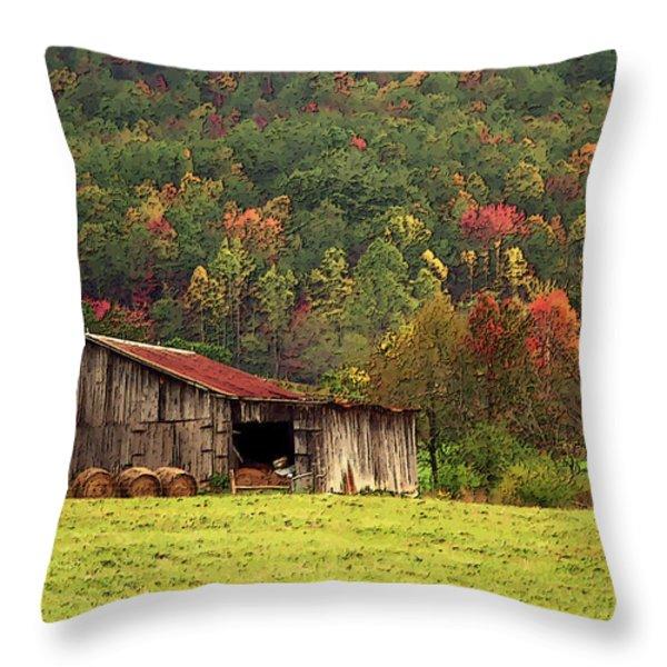 Barn North Carolina 1994 Throw Pillow by Michelle Wiarda