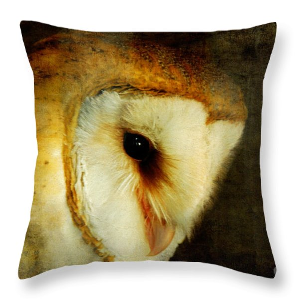 Barn Owl Throw Pillow by Lois Bryan