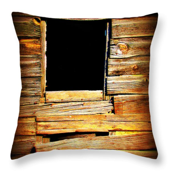Barn Window Throw Pillow by Perry Webster