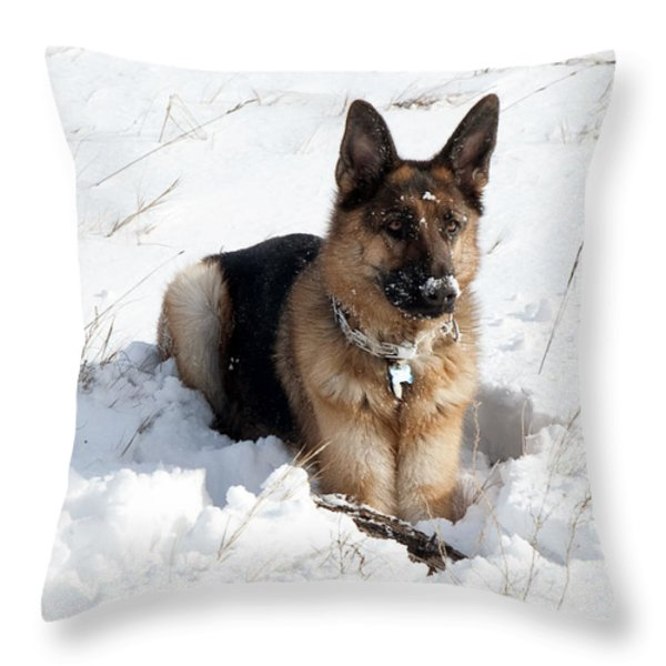 Be Vewy Vewy Quiet Throw Pillow by Greg Fortier