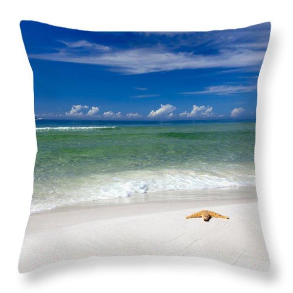 Beach Splendour Throw Pillow by Janet Fikar