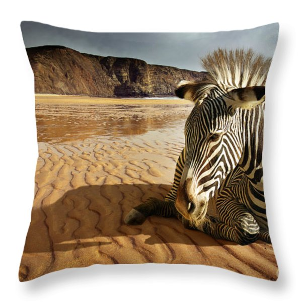 Beach Zebra Throw Pillow by Carlos Caetano