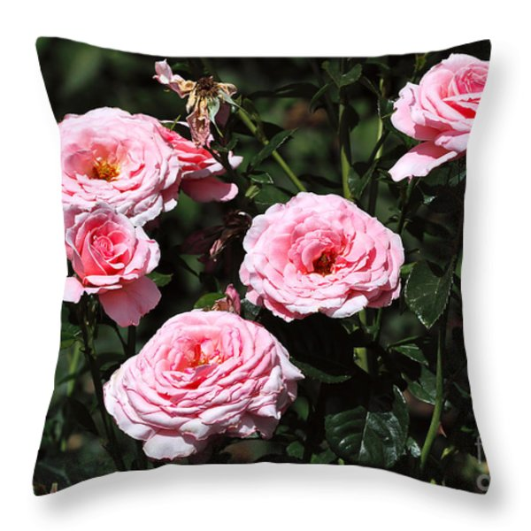 Beautiful Pink Rose L'aimant Throw Pillow by Louise Heusinkveld