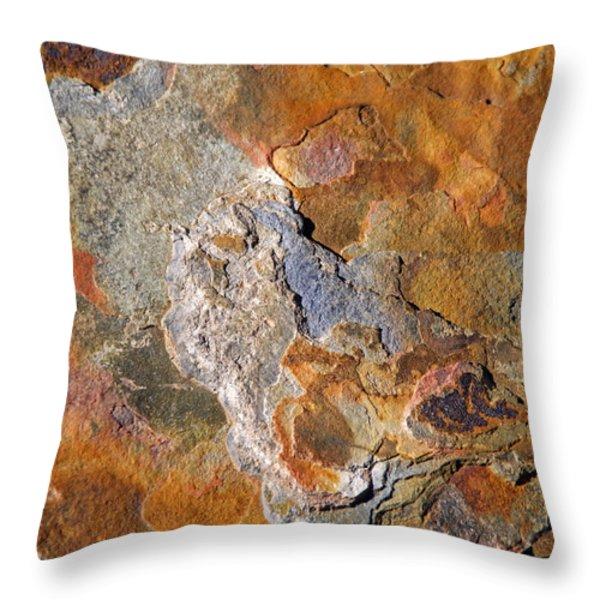 Beautiful Surface Throw Pillow by Lynda Lehmann