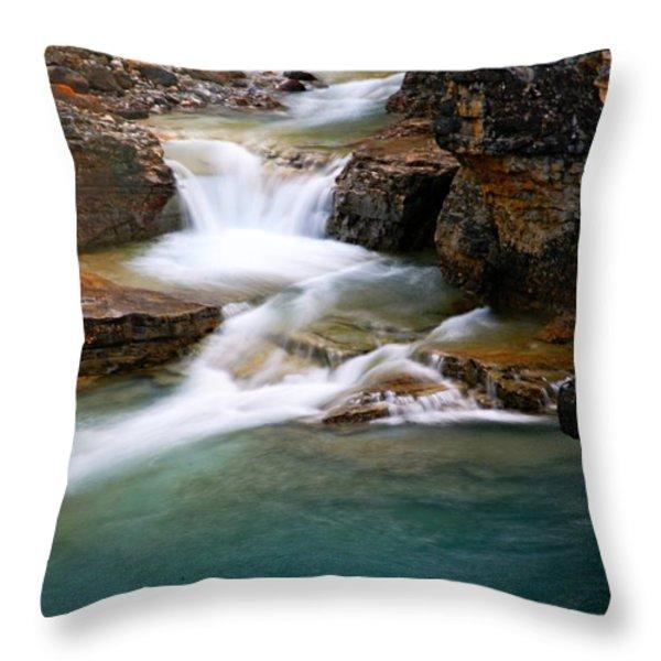 Beauty Creek Cascades Throw Pillow by Larry Ricker