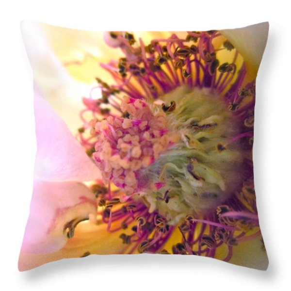 Bedazzled Throw Pillow by Gwyn Newcombe