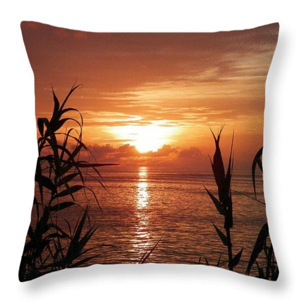 Bermuda Evening Throw Pillow By Gina Sullivan