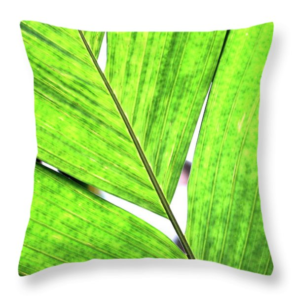 Big Green Leaf . 7D5763 Throw Pillow by Wingsdomain Art and Photography