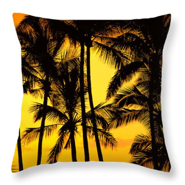 Big Island, View Throw Pillow by Greg Vaughn - Printscapes