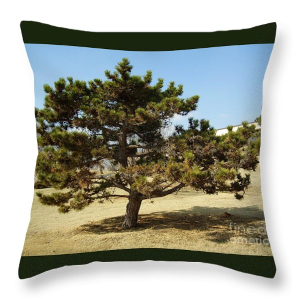 Big Man On Campus Throw Pillow by Iris M Gross