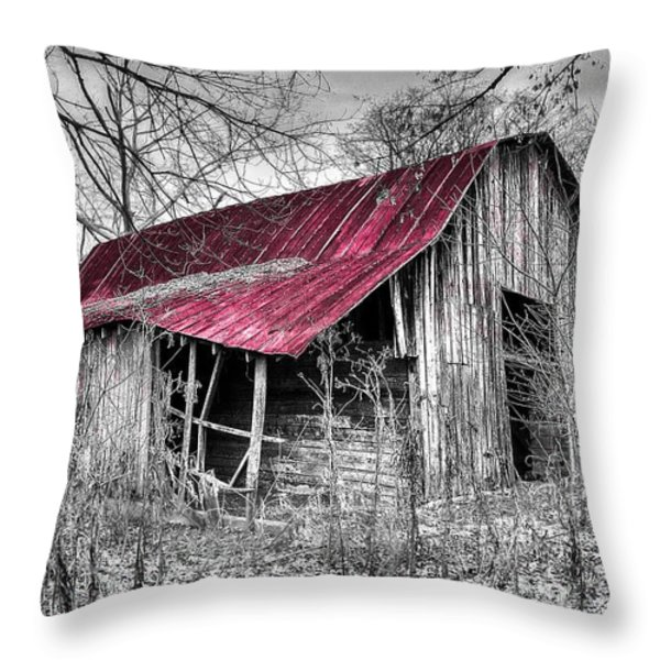 Big Red Throw Pillow by Debra and Dave Vanderlaan