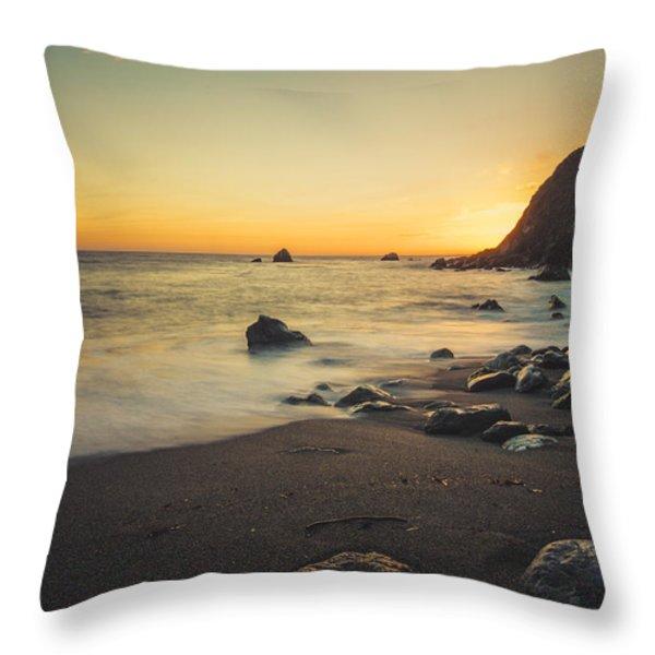 Big Sur Beach Throw Pillow by Lynn Andrews