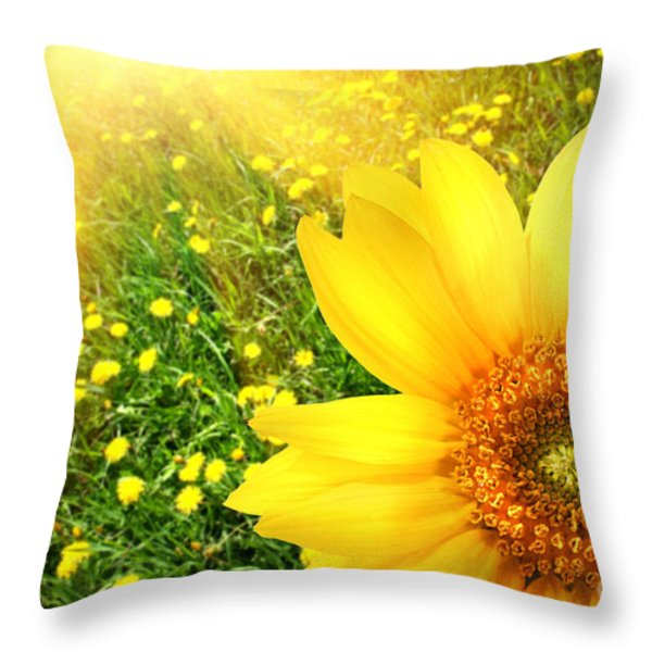 Big yellow sunflower  Throw Pillow by Sandra Cunningham