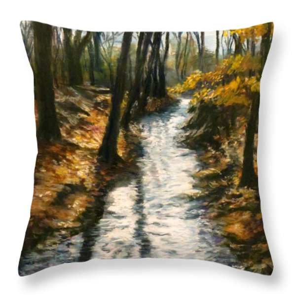 Bike Path Brook Throw Pillow by Jack Skinner