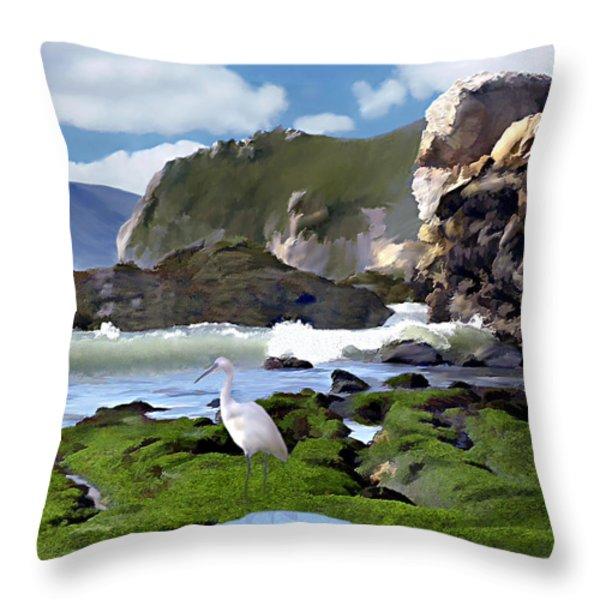 Bird's Eye View Throw Pillow by Kurt Van Wagner