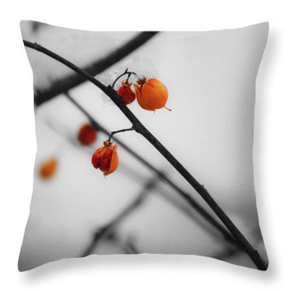 Bittersweet  Throw Pillow by Teresa Mucha