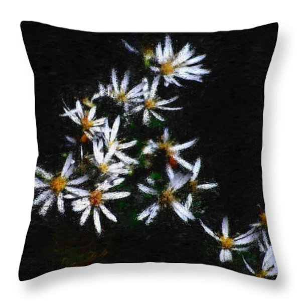 Black And White Study II Throw Pillow by David Lane