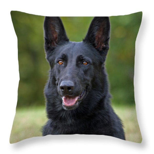 Black German Shepherd Dog Throw Pillow by Sandy Keeton