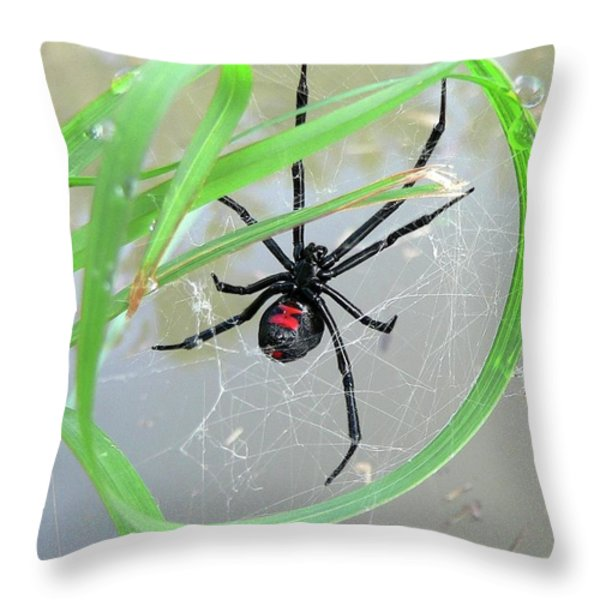 Black Widow Wheel Throw Pillow by Al Powell Photography USA