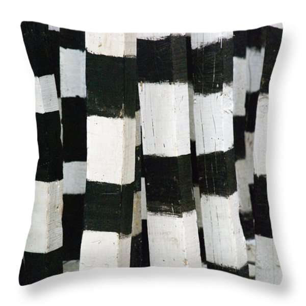 Blanco Y Negro Throw Pillow by Skip Hunt