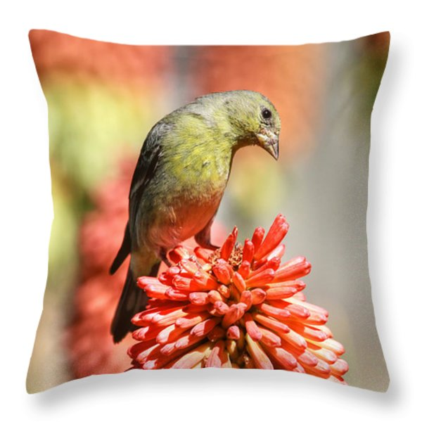 Blending In Throw Pillow by Donna Kennedy