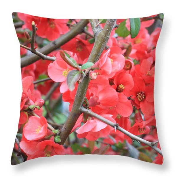 Blossoms Branches And Thorns Throw Pillow by Carol Groenen