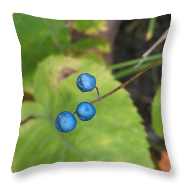 Blue Berries Throw Pillow by Kelly Mezzapelle
