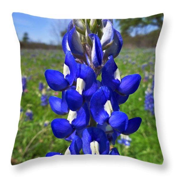 Blue Bonnet Throw Pillow by Skip Hunt