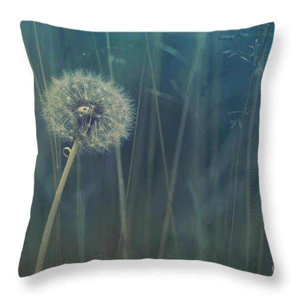 blue tinted Throw Pillow by Priska Wettstein