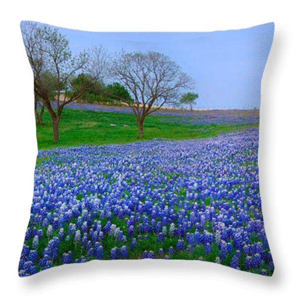 Bluebonnet Vista - Texas Bluebonnet wildflowers landscape flowers  Throw Pillow by Jon Holiday