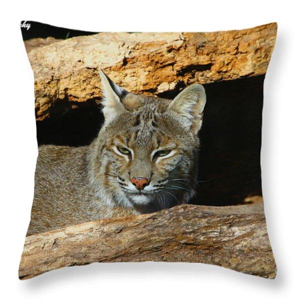 Bobcat Hiding in a Log Throw Pillow by Barbara Bowen