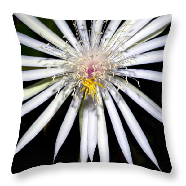 Bold Cactus Flower Throw Pillow by Kelley King