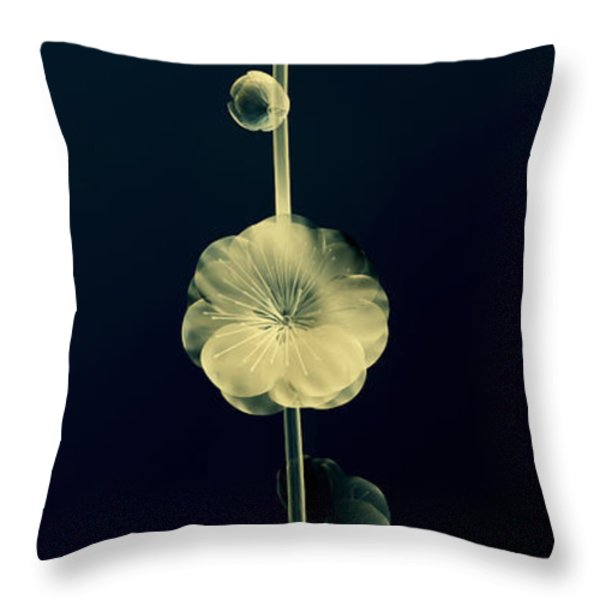 Botanical Study 6 Throw Pillow by Brian Drake - Printscapes