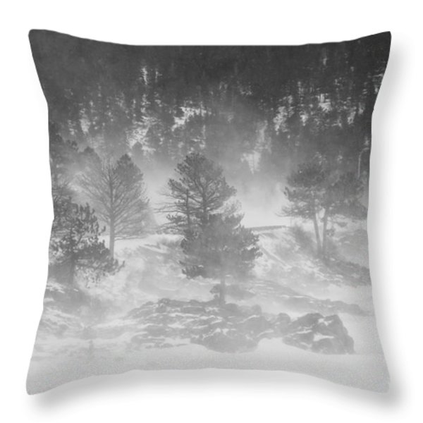 Boulder Canyon And Nederland Winter Landscape Throw Pillow by James BO  Insogna