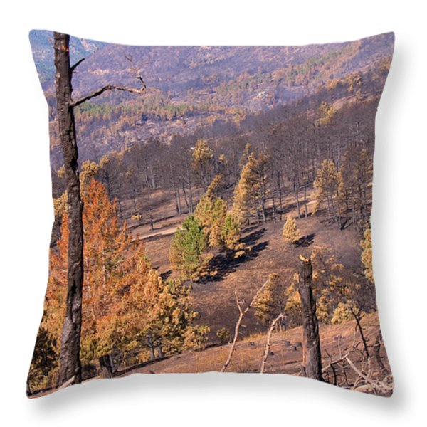 Boulder County Wildfire 5 Miles West Of Downtown Boulder Throw Pillow by James BO  Insogna