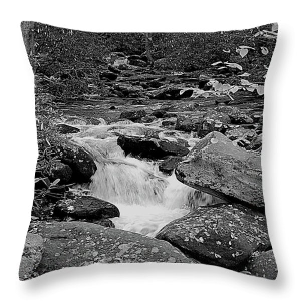 Boulder Creek Throw Pillow by DigiArt Diaries by Vicky B Fuller