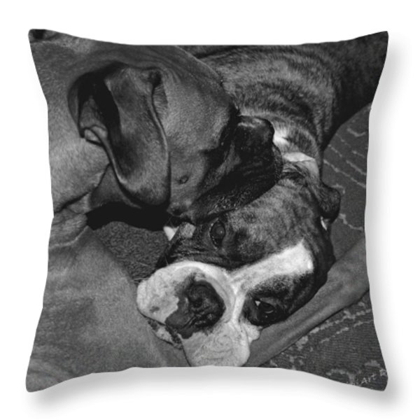 Boxer Buddies Throw Pillow by DigiArt Diaries by Vicky B Fuller