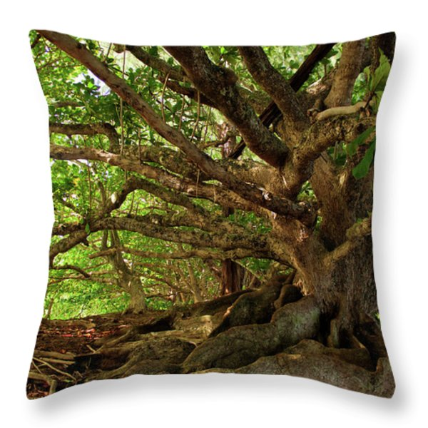 Branches And Roots Throw Pillow by James Eddy