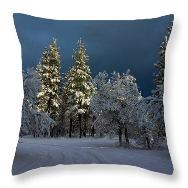 Break In The Storm Throw Pillow by James Eddy