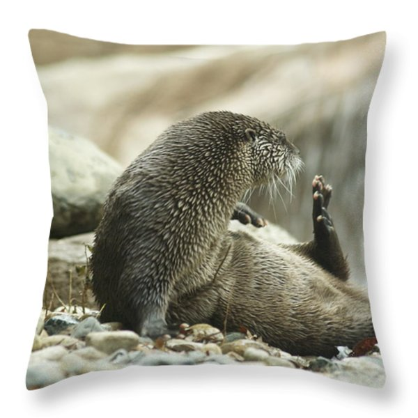 Break Time Throw Pillow by Michael Peychich