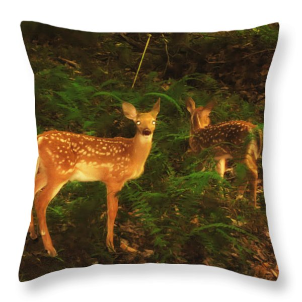 Bright Eyes Throw Pillow by Bill Cannon