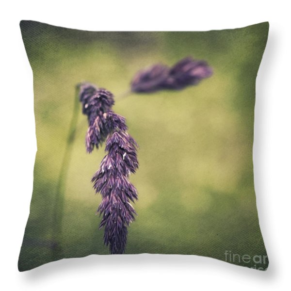 Brin D'herbe Throw Pillow by Angela Doelling AD DESIGN Photo and PhotoArt