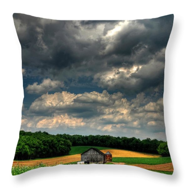 Brooding Sky Throw Pillow by Lois Bryan