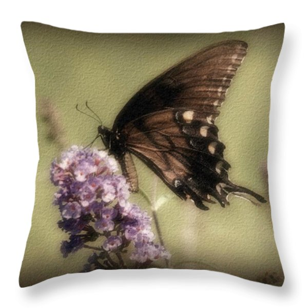 Brown and Beautiful Throw Pillow by Sandy Keeton