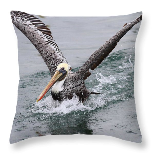 Brown Pelican Landing On Water . 7D8372 Throw Pillow by Wingsdomain Art and Photography