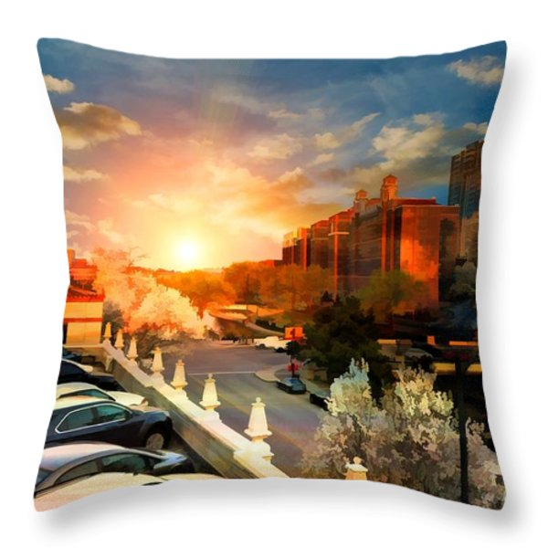 Brush Creek Kansas City Missouri Throw Pillow by Liane Wright